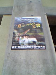 ファイル 363-3.jpg